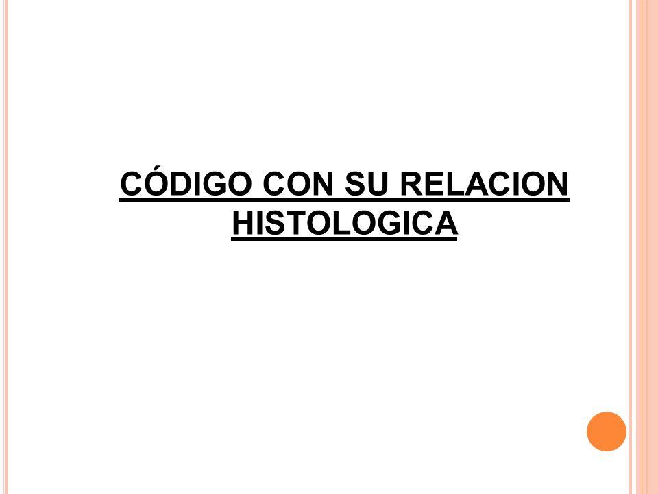 CÓDIGO CON SU RELACION HISTOLOGICA