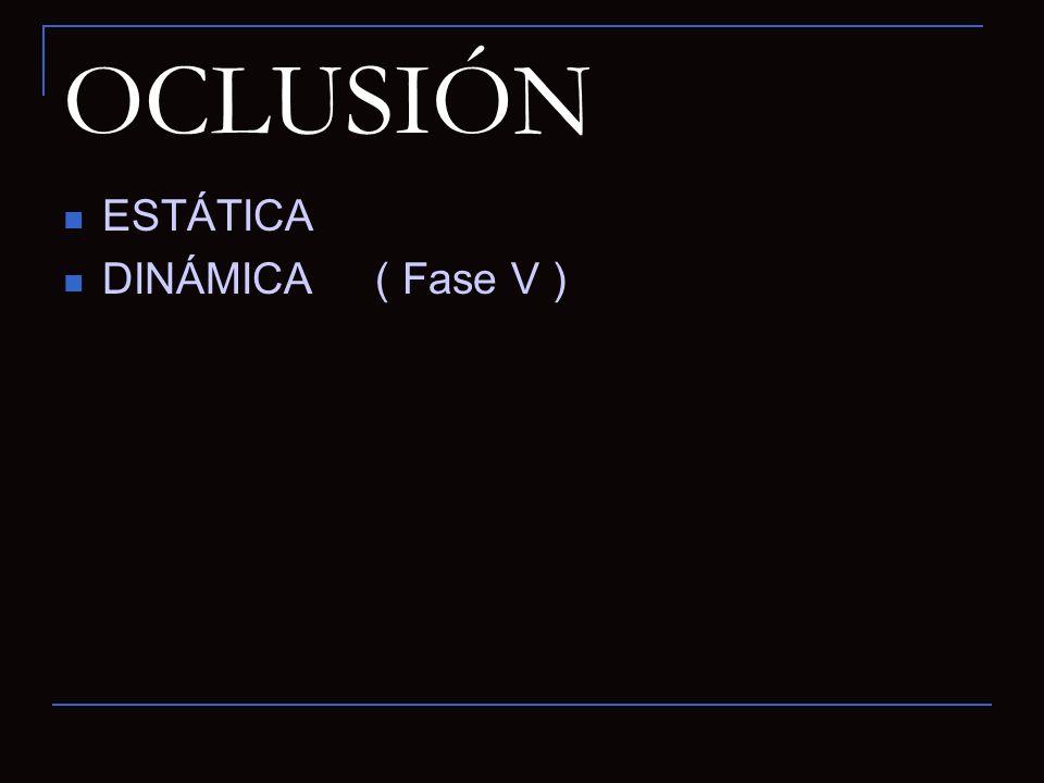 OCLUSIÓN ESTÁTICA DINÁMICA ( Fase V )