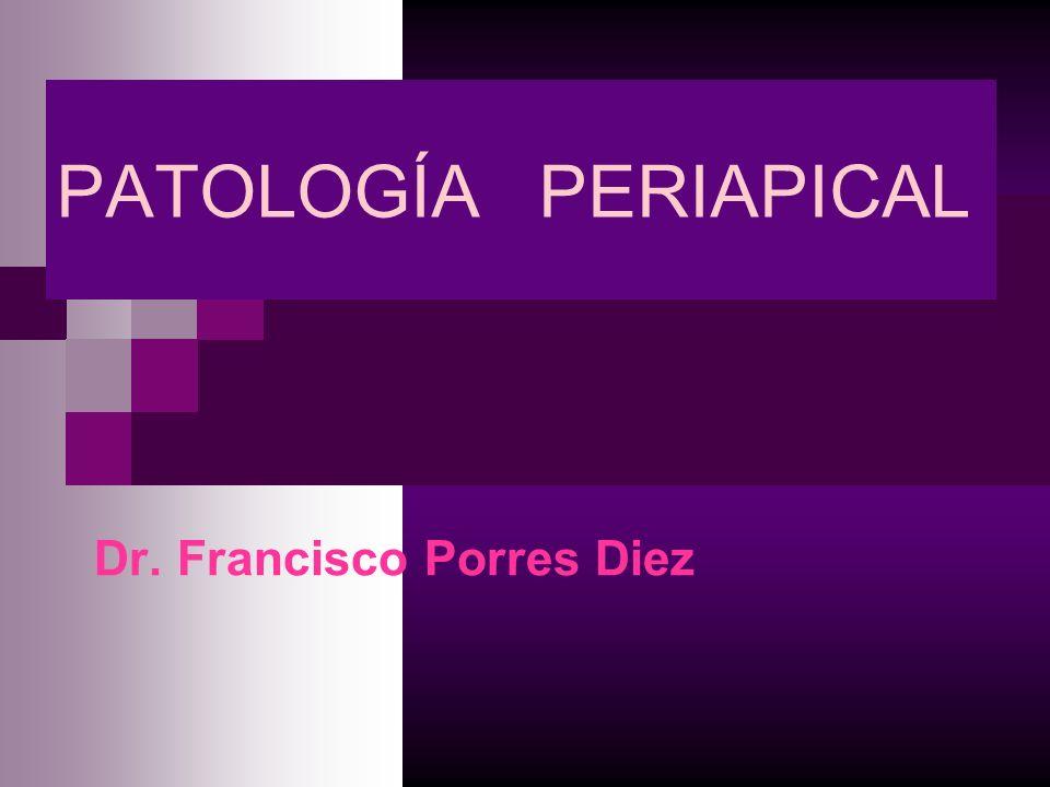 Dr. Francisco Porres Diez