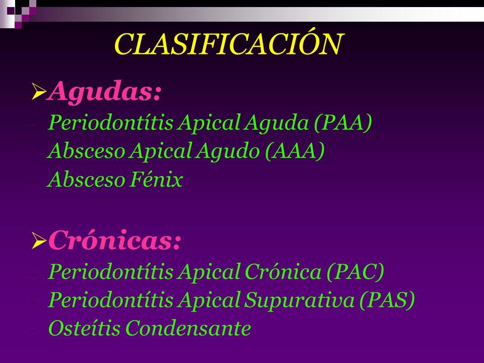 CLASIFICACIÓN Agudas: Crónicas: Periodontítis Apical Aguda (PAA)