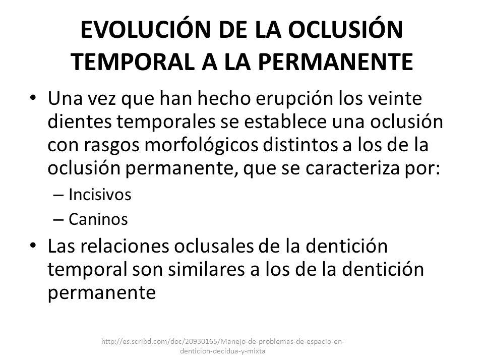 EVOLUCIÓN DE LA OCLUSIÓN TEMPORAL A LA PERMANENTE