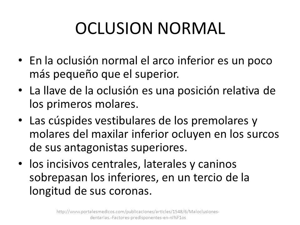 OCLUSION NORMAL En la oclusión normal el arco inferior es un poco más pequeño que el superior.