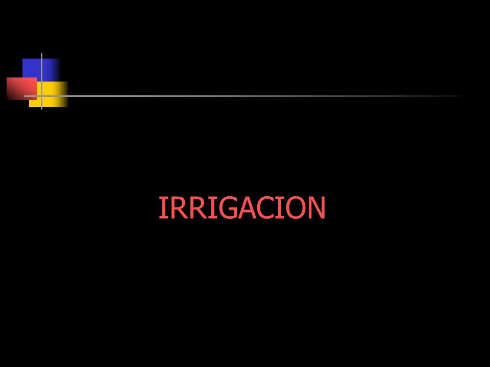 IRRIGACION