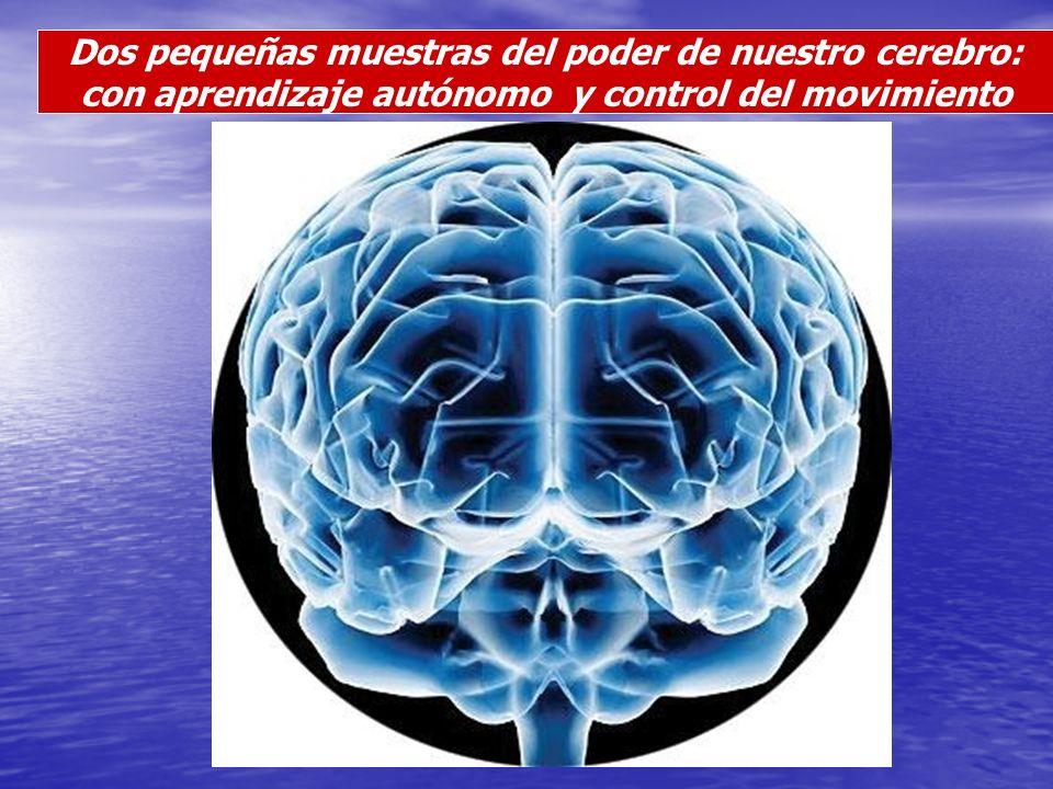 Dos pequeñas muestras del poder de nuestro cerebro: