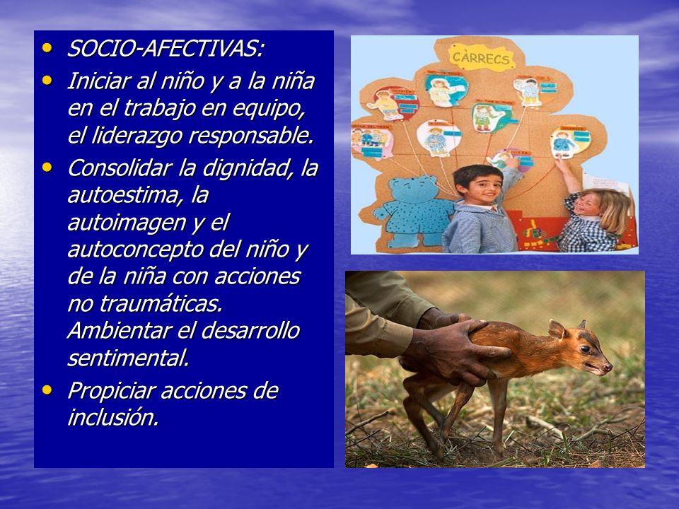 SOCIO-AFECTIVAS:Iniciar al niño y a la niña en el trabajo en equipo, el liderazgo responsable.