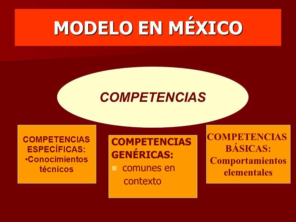 MODELO EN MÉXICO COMPETENCIAS COMPETENCIAS BÁSICAS: COMPETENCIAS