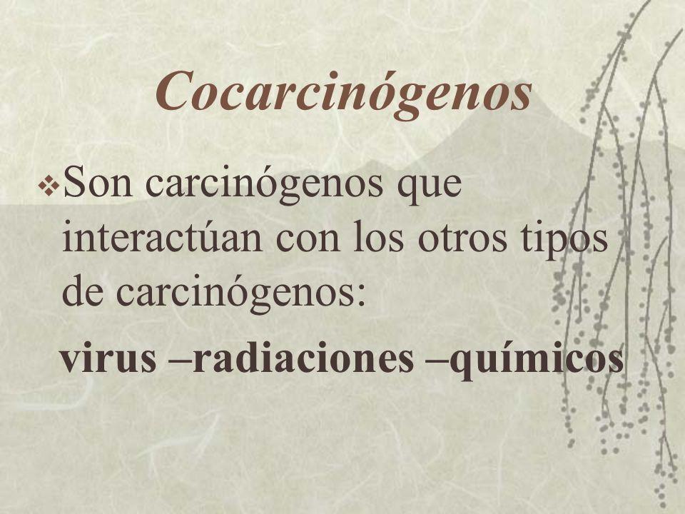 CocarcinógenosSon carcinógenos que interactúan con los otros tipos de carcinógenos: virus –radiaciones –químicos.