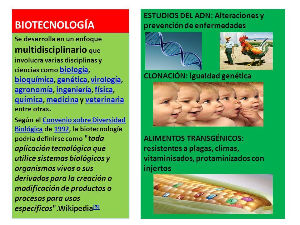 BIOTECNOLOGÍA ESTUDIOS DEL ADN: Alteraciones y prevención de enfermedades. CLONACIÓN: igualdad genética.