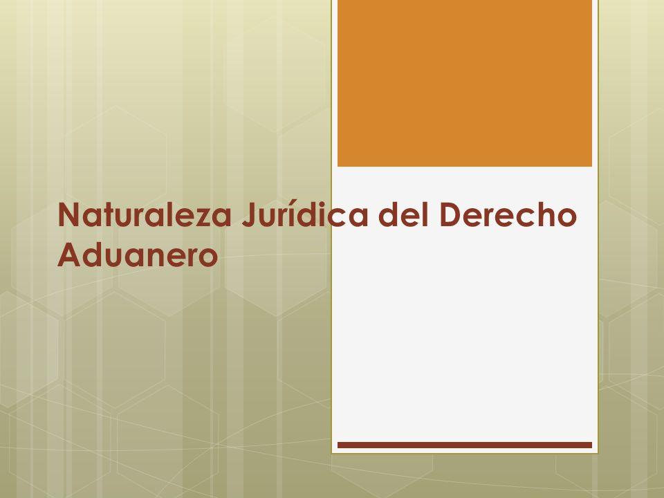 Naturaleza Jurídica del Derecho Aduanero