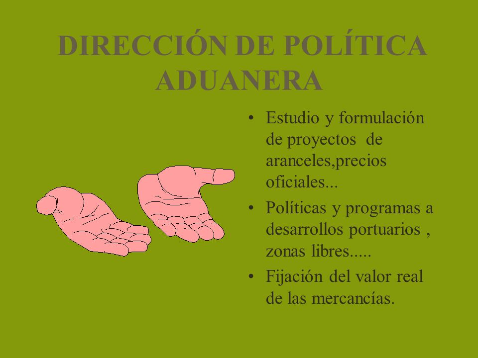 DIRECCIÓN DE POLÍTICA ADUANERA