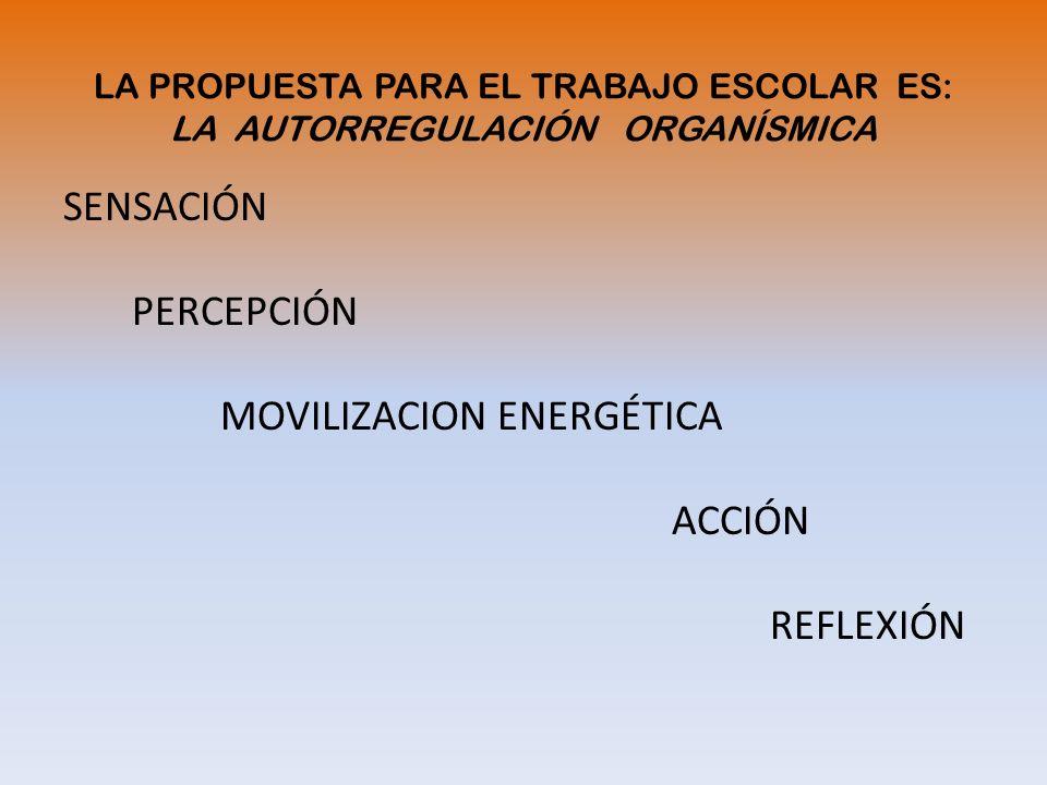 SENSACIÓN PERCEPCIÓN MOVILIZACION ENERGÉTICA ACCIÓN REFLEXIÓN