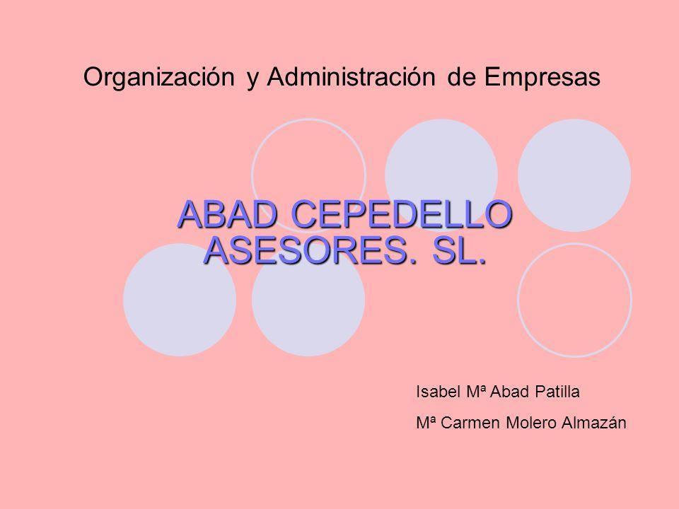 Organización y Administración de Empresas