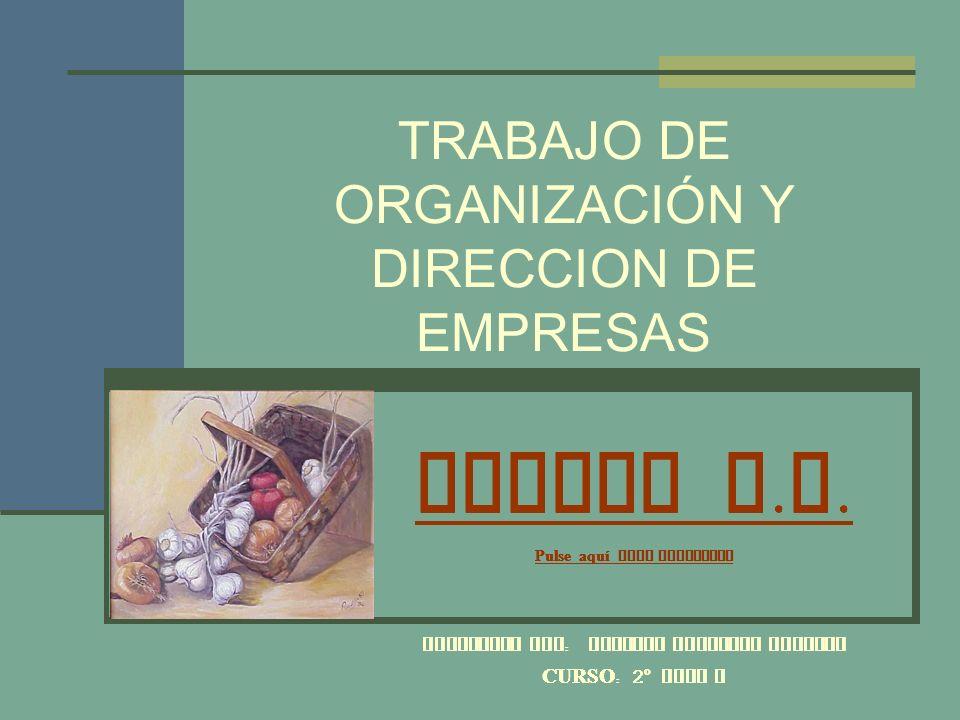 TRABAJO DE ORGANIZACIÓN Y DIRECCION DE EMPRESAS