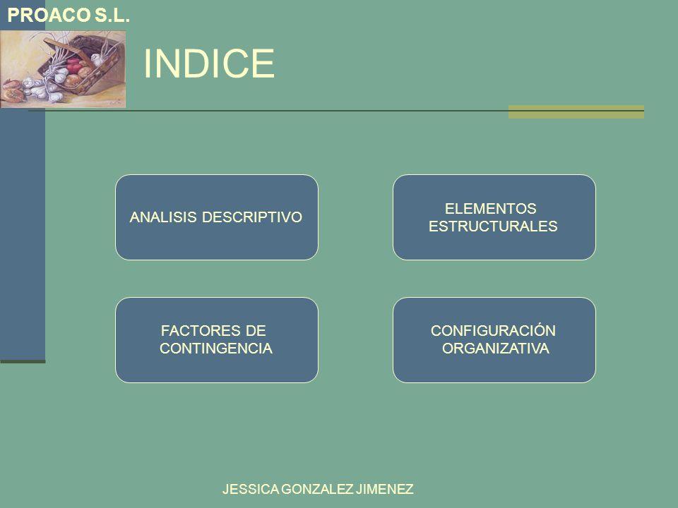 INDICE PROACO S.L. ANALISIS DESCRIPTIVO ELEMENTOS ESTRUCTURALES