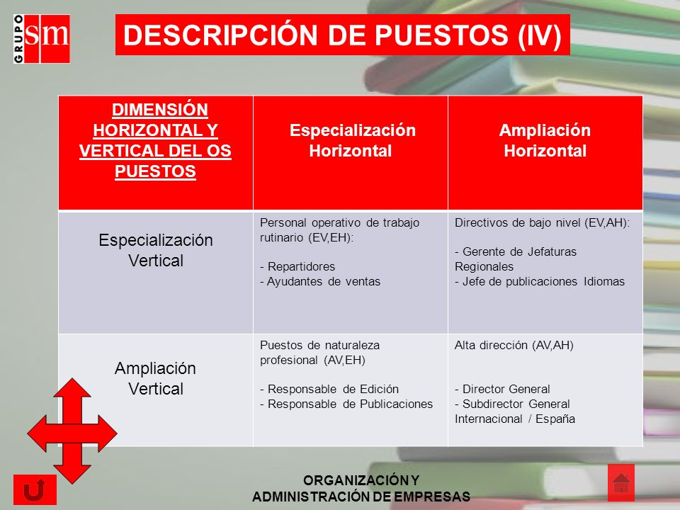 DESCRIPCIÓN DE PUESTOS (IV)