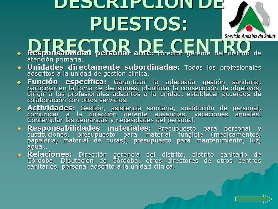 DESCRIPCIÓN DE PUESTOS: DIRECTOR DE CENTRO