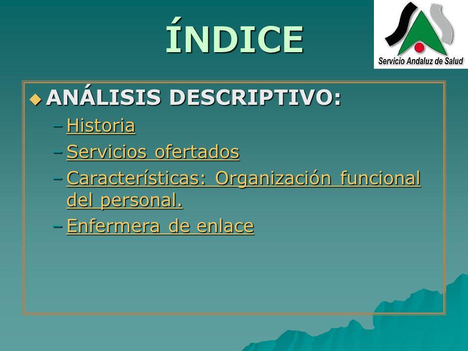 ÍNDICE ANÁLISIS DESCRIPTIVO: Historia Servicios ofertados