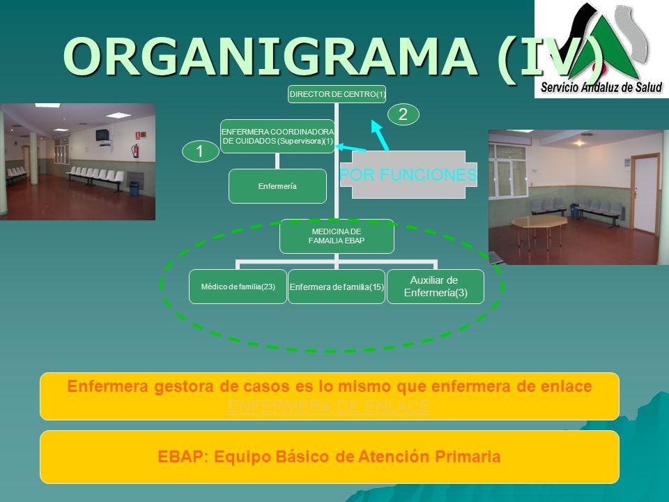 ORGANIGRAMA (IV) 2 1 POR FUNCIONES