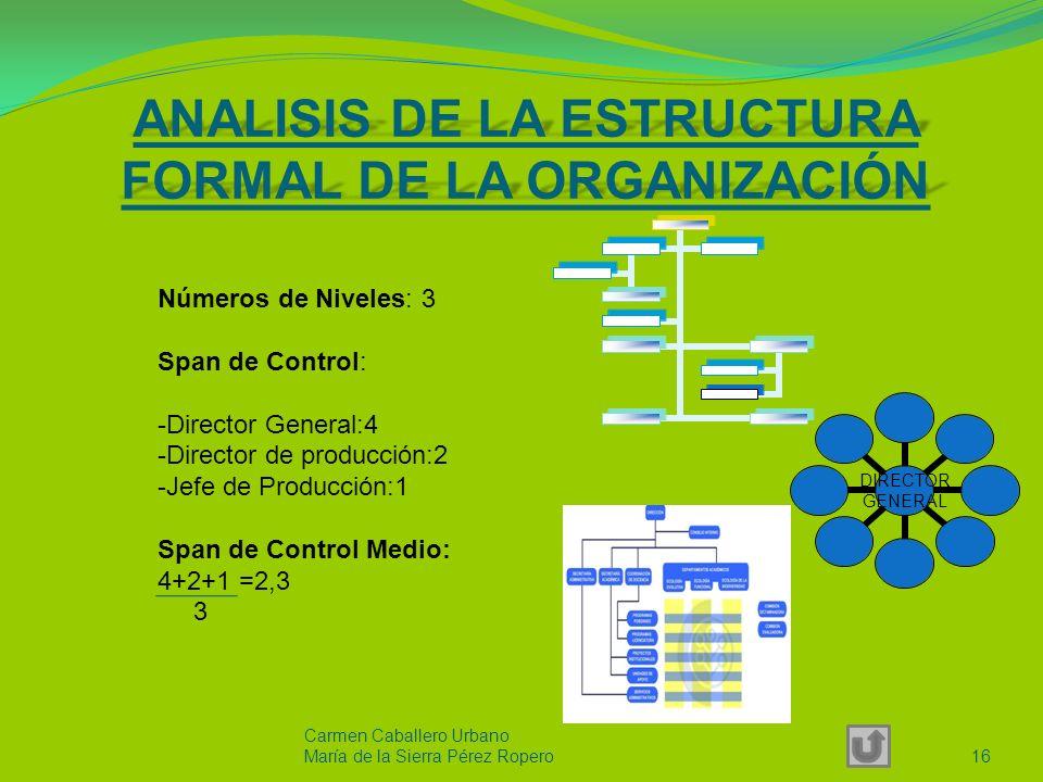ANALISIS DE LA ESTRUCTURA FORMAL DE LA ORGANIZACIÓN