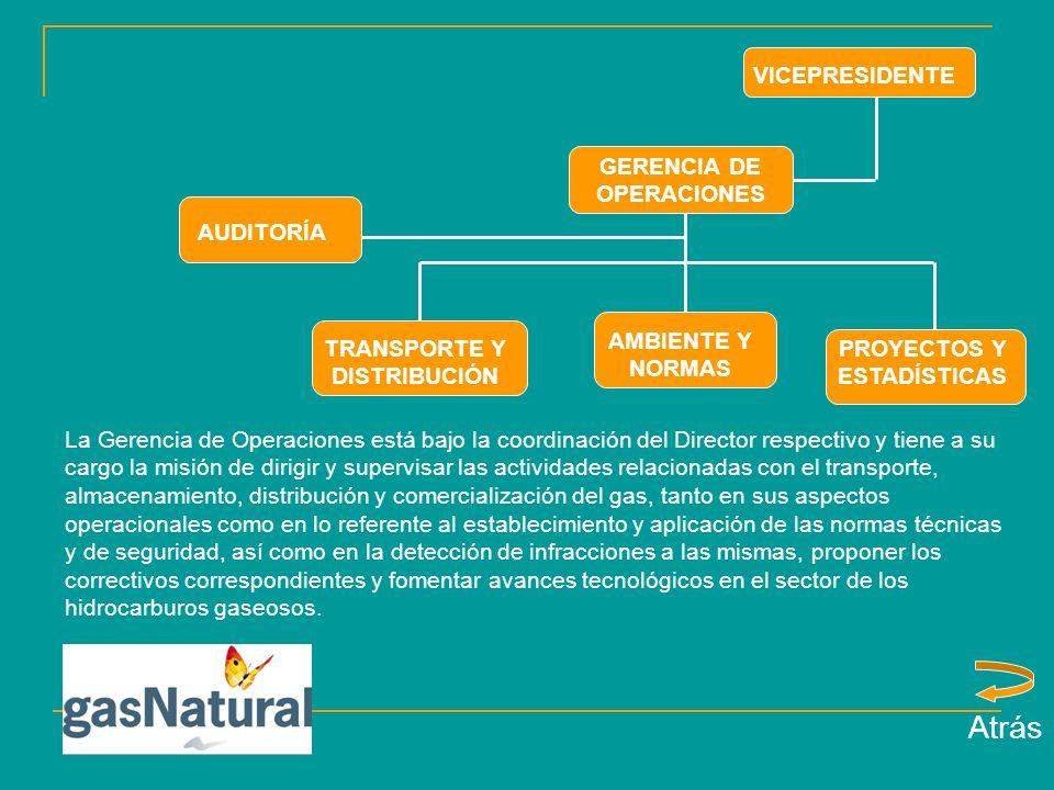 Atrás VICEPRESIDENTE GERENCIA DE OPERACIONES AUDITORÍA