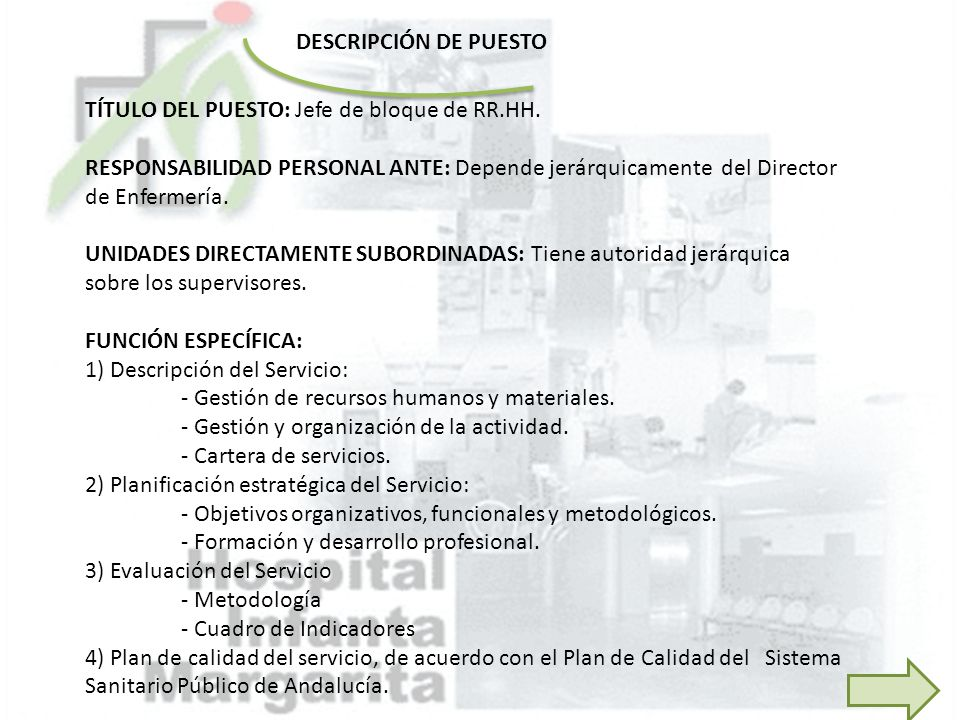 DESCRIPCIÓN DE PUESTO TÍTULO DEL PUESTO: Jefe de bloque de RR.HH.