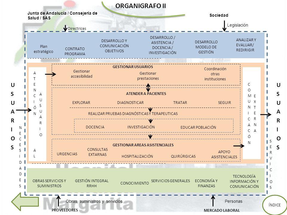 ORGANIGRAFO II USUARIOS USUARIOS