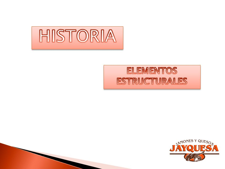 HISTORIA ELEMENTOS ESTRUCTURALES