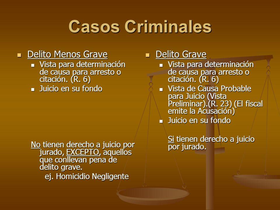 Casos Criminales Delito Menos Grave Delito Grave