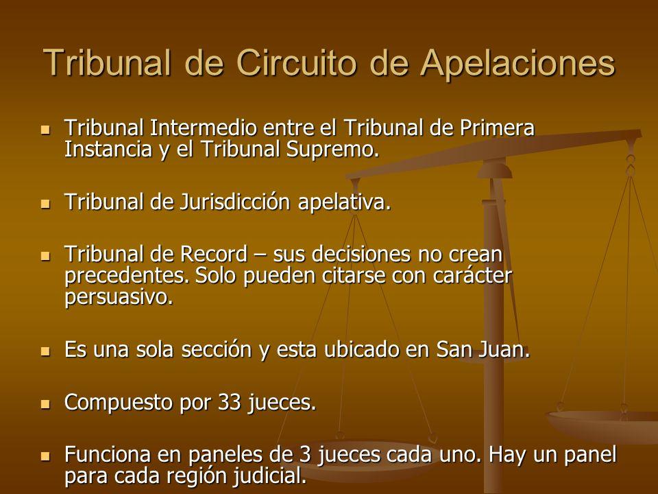 Tribunal de Circuito de Apelaciones