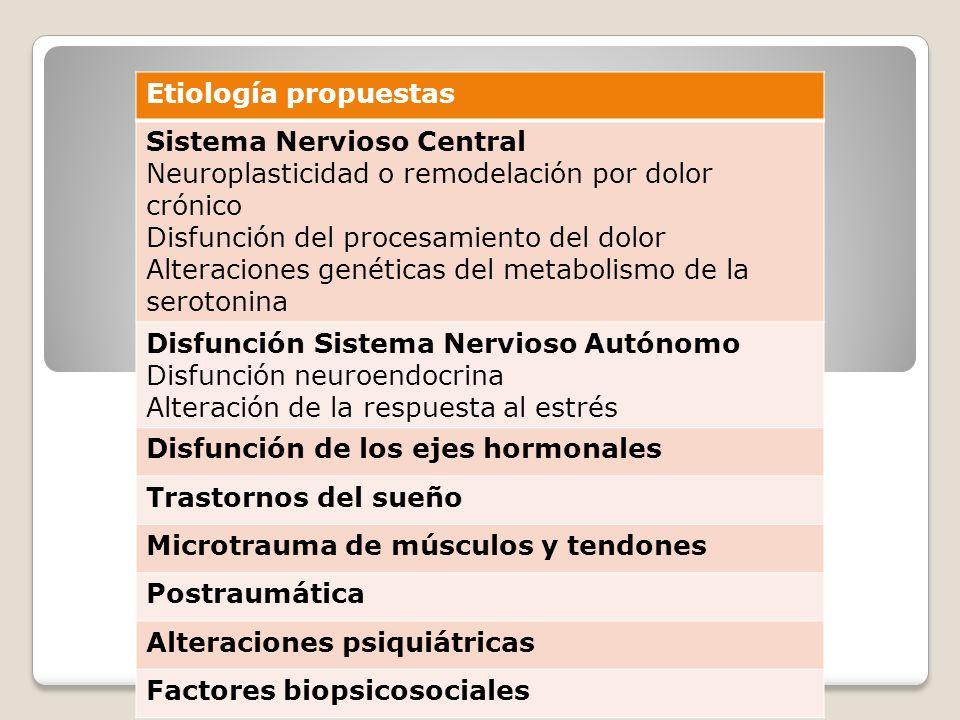 Etiología propuestas Sistema Nervioso Central. Neuroplasticidad o remodelación por dolor crónico. Disfunción del procesamiento del dolor.