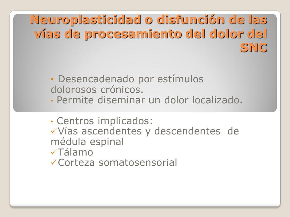 Neuroplasticidad o disfunción de las vías de procesamiento del dolor del SNC