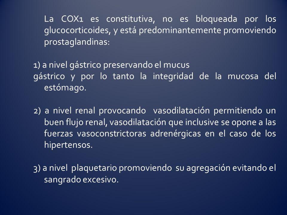 La COX1 es constitutiva, no es bloqueada por los glucocorticoides, y está predominantemente promoviendo prostaglandinas: