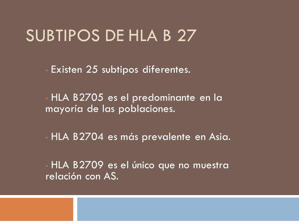 Subtipos de HLA B 27 Existen 25 subtipos diferentes.