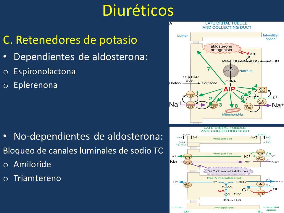 Diuréticos C. Retenedores de potasio Dependientes de aldosterona: