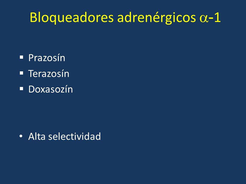 Bloqueadores adrenérgicos -1