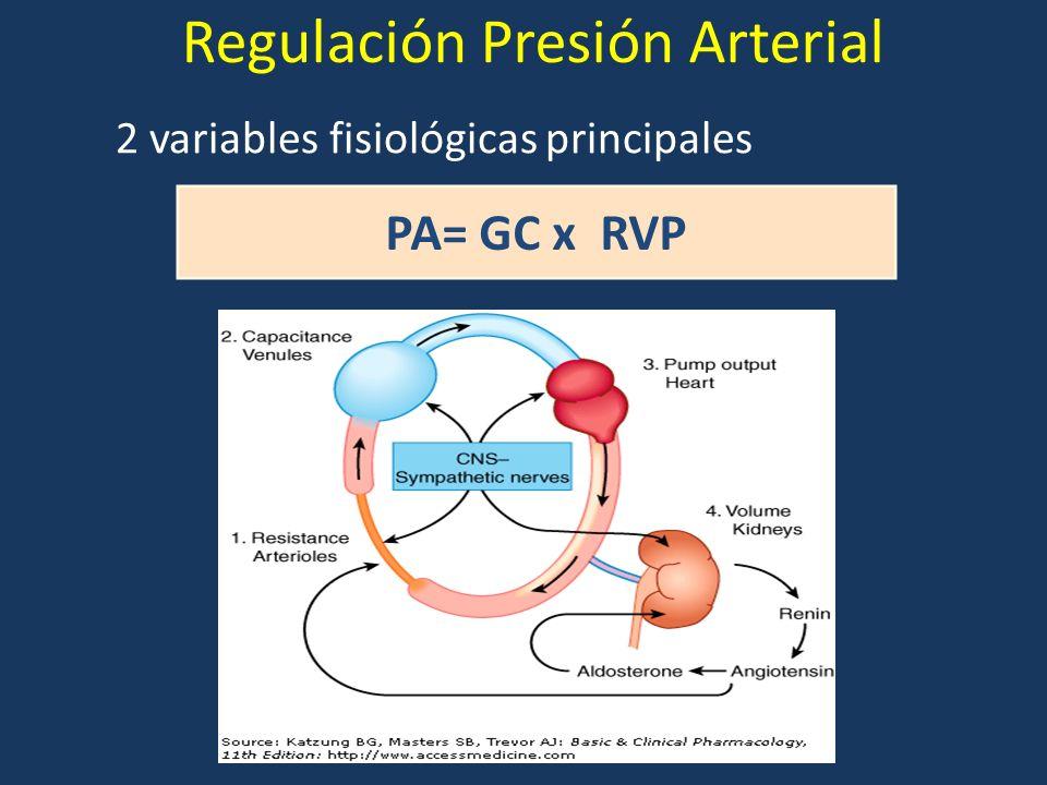 Regulación Presión Arterial