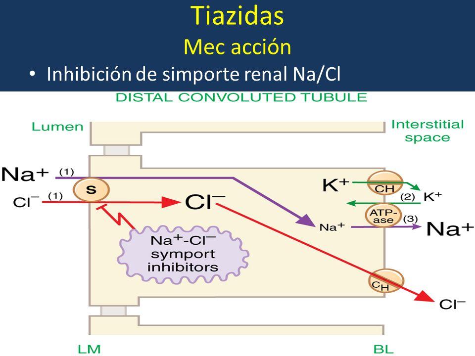 Tiazidas Mec acción Inhibición de simporte renal Na/Cl