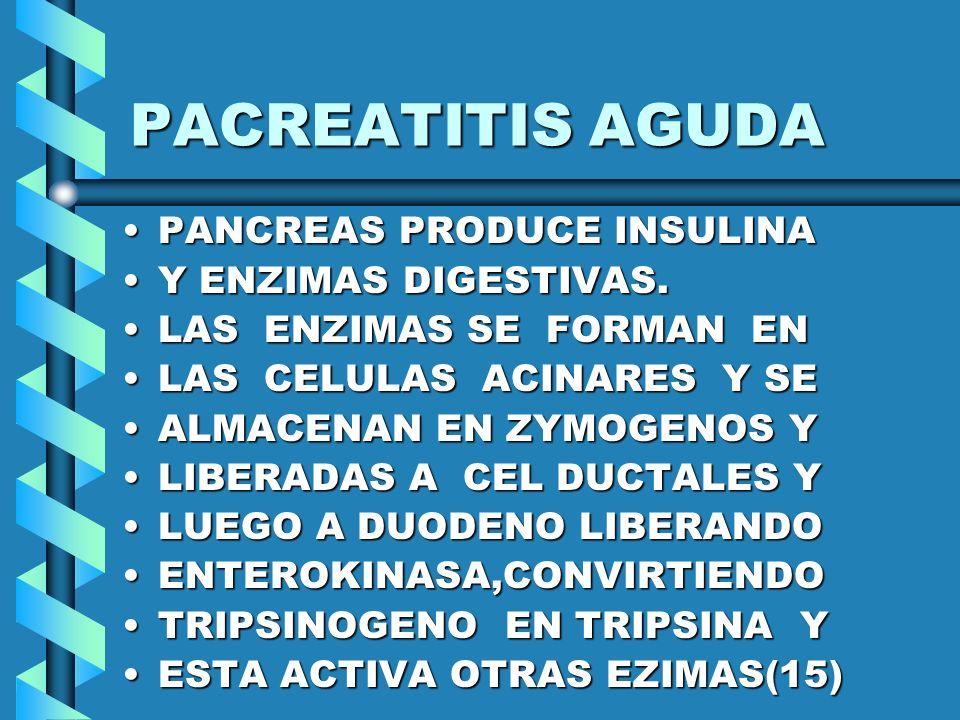 PACREATITIS AGUDA PANCREAS PRODUCE INSULINA Y ENZIMAS DIGESTIVAS.