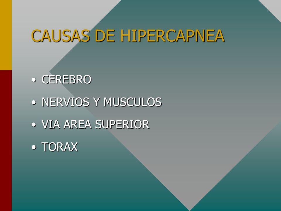 CAUSAS DE HIPERCAPNEA CEREBRO NERVIOS Y MUSCULOS VIA AREA SUPERIOR