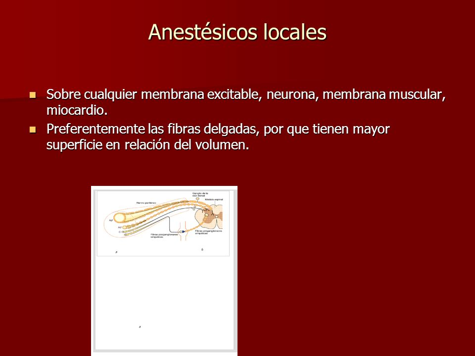 Anestésicos locales Sobre cualquier membrana excitable, neurona, membrana muscular, miocardio.