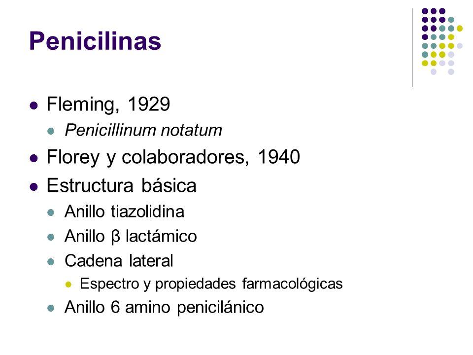 Penicilinas Fleming, 1929 Florey y colaboradores, 1940