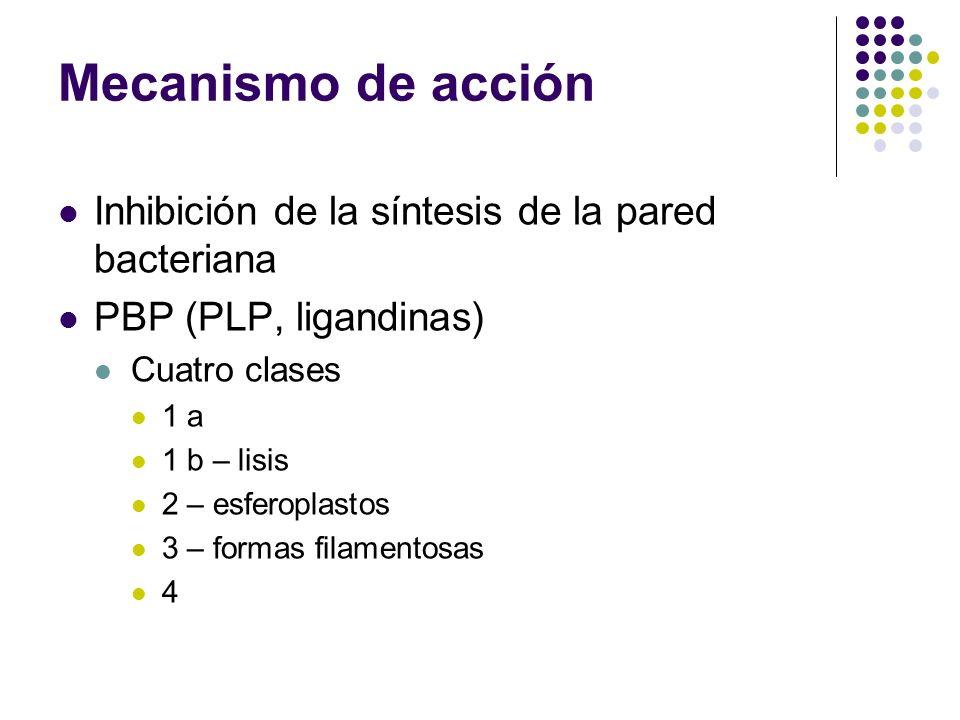 Mecanismo de acción Inhibición de la síntesis de la pared bacteriana