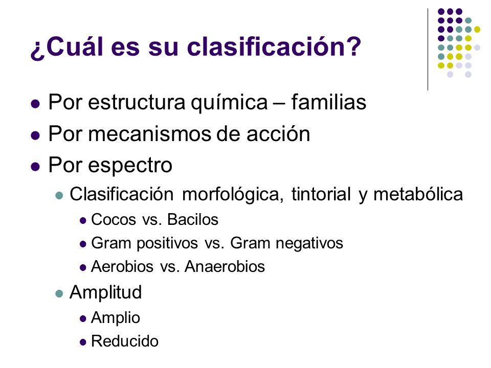 ¿Cuál es su clasificación