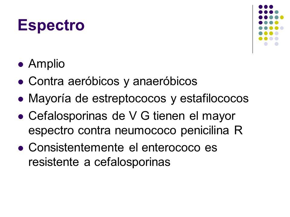 Espectro Amplio Contra aeróbicos y anaeróbicos