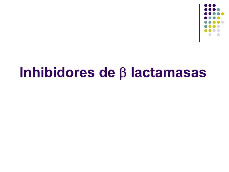 Inhibidores de  lactamasas