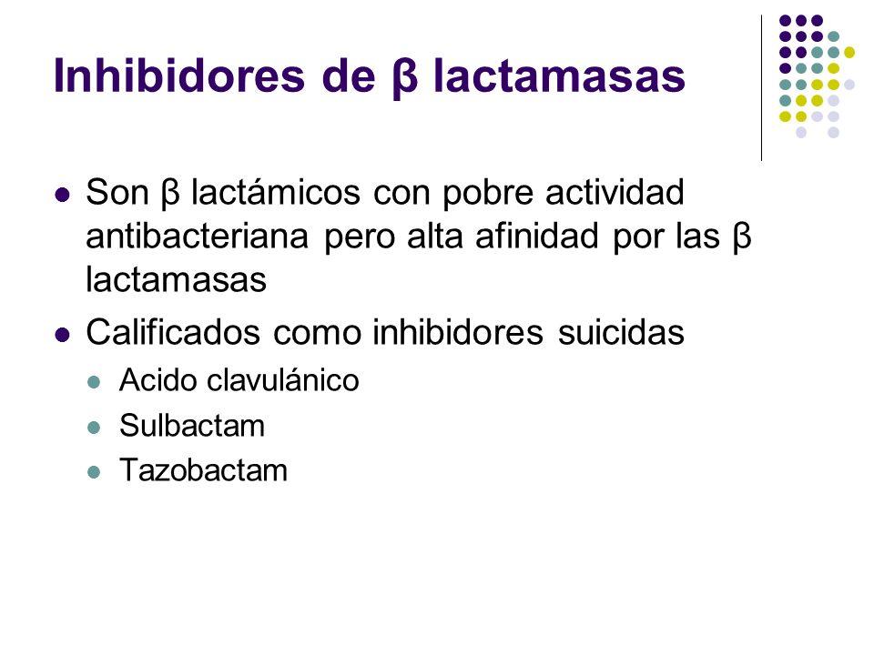 Inhibidores de β lactamasas