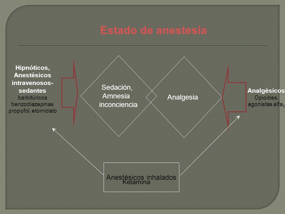 Estado de anestesia Sedación, Amnesia Analgesia inconciencia