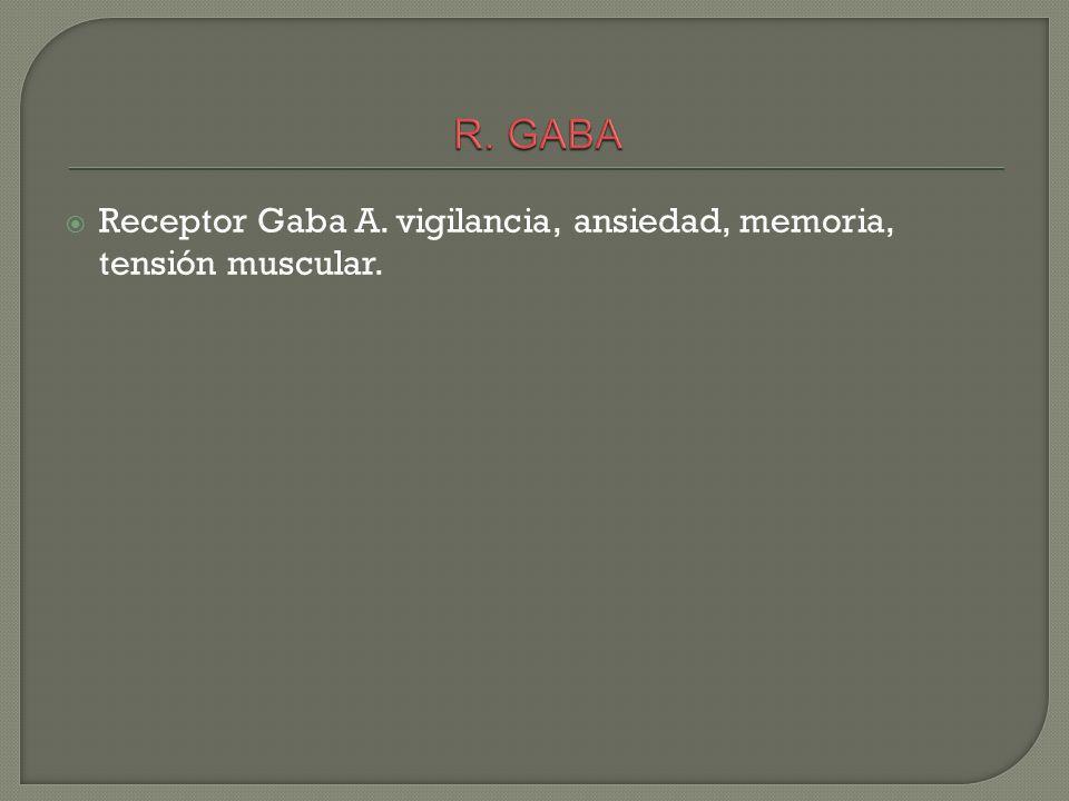 R. GABA Receptor Gaba A. vigilancia, ansiedad, memoria, tensión muscular.