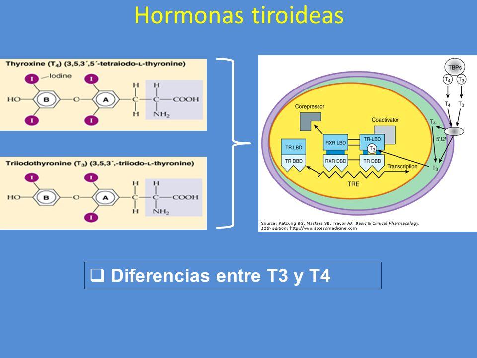 Hormonas tiroideas Diferencias entre T3 y T4