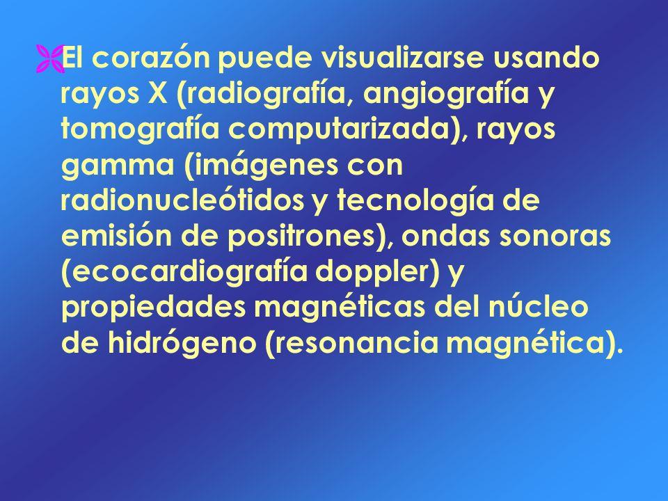 El corazón puede visualizarse usando rayos X (radiografía, angiografía y tomografía computarizada), rayos gamma (imágenes con radionucleótidos y tecnología de emisión de positrones), ondas sonoras (ecocardiografía doppler) y propiedades magnéticas del núcleo de hidrógeno (resonancia magnética).